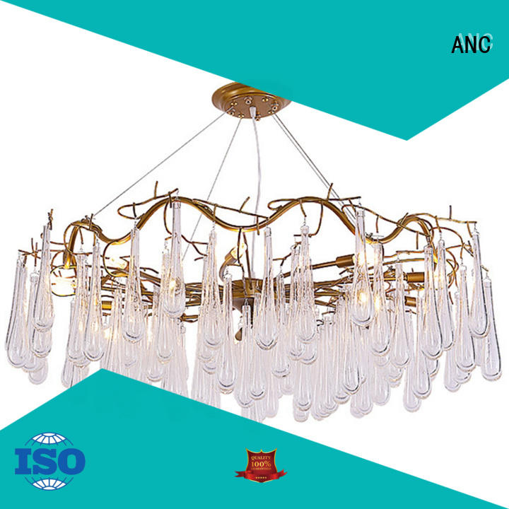 ANC excellent post-modern chandeliers conjunction school